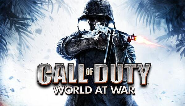 Call of Duty World at War released on November 11, 2008.